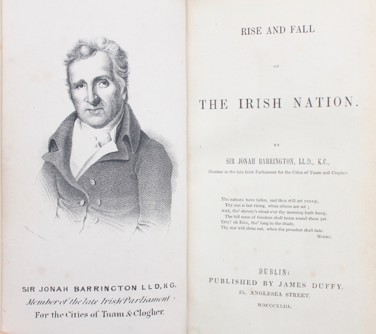 Image for Rise and Fall of the Irish Nation.