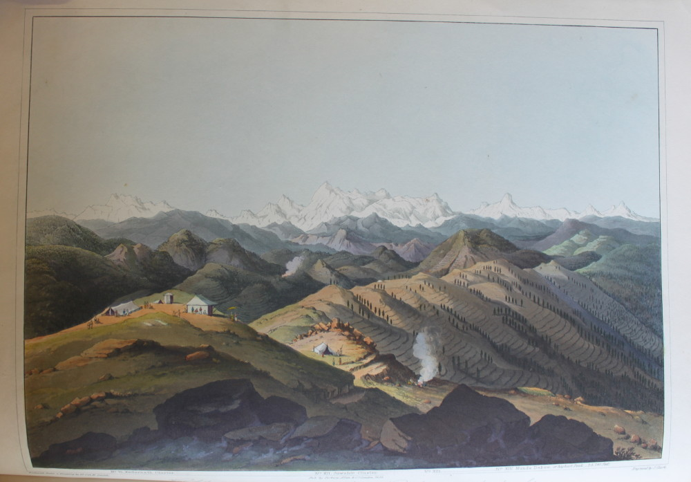 Image for Illustrations of the Botany and Other Branches of the Natural History of the Himalayan Mountains and of the Flora of Cashmere.