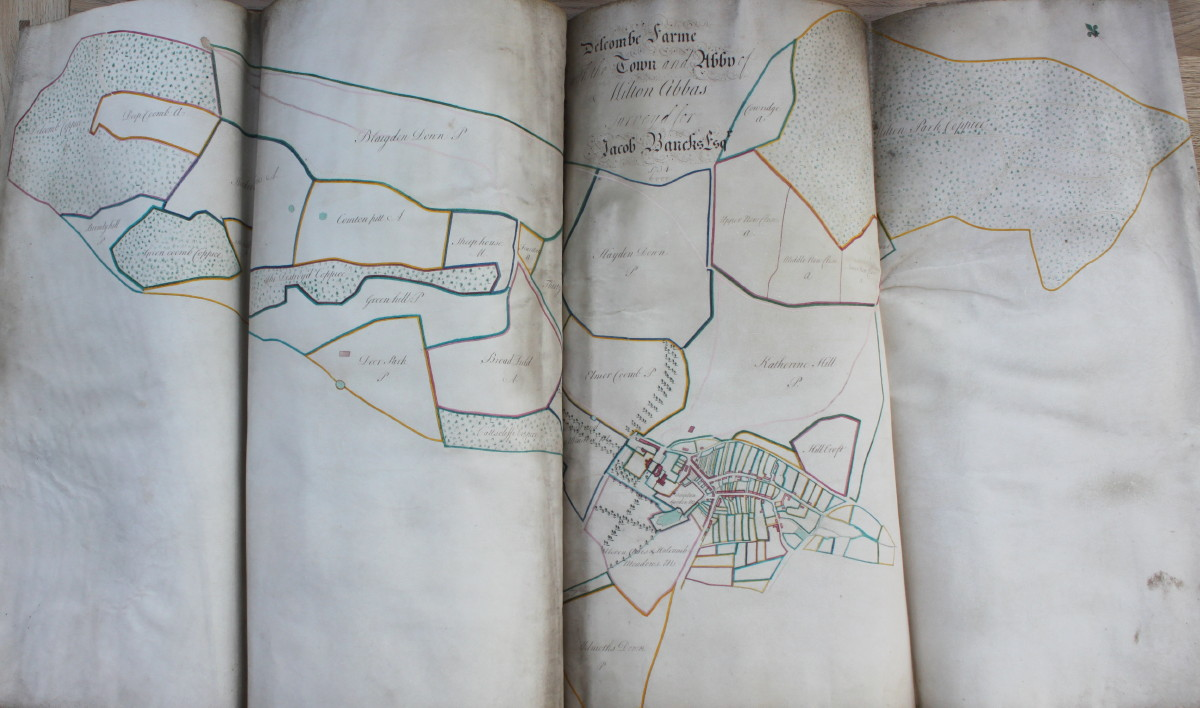 Image for The Ichnographii of the Town Parts, Leasehold and Copie Hold, Tennements and Cottages in the Mannor of Milton Abbas.