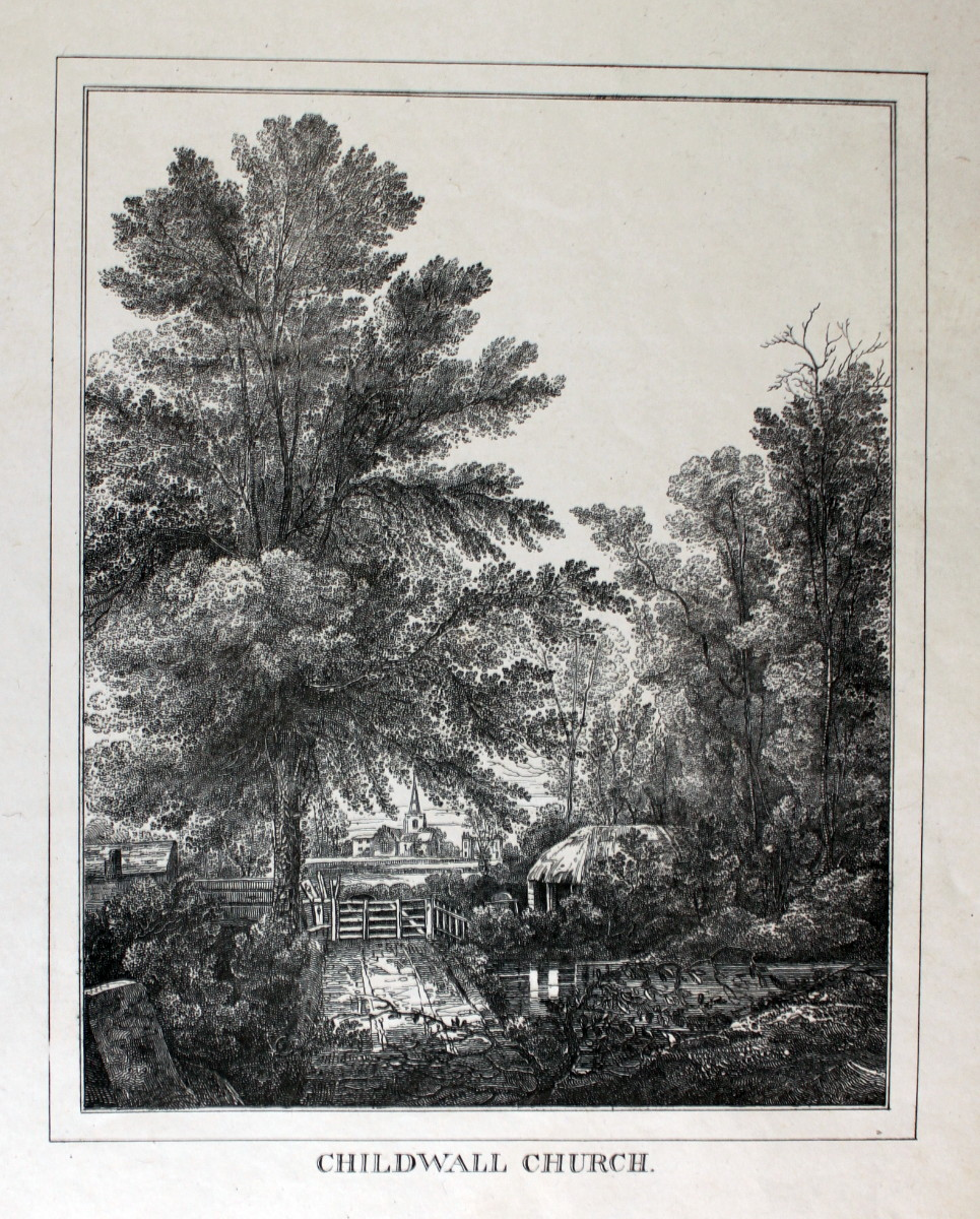 Image for Twenty-Six Lithographic Drawings; Views in the Vicinity of Liverpool.