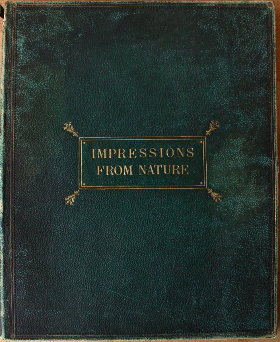 Image for Impressions From Nature [cover title].