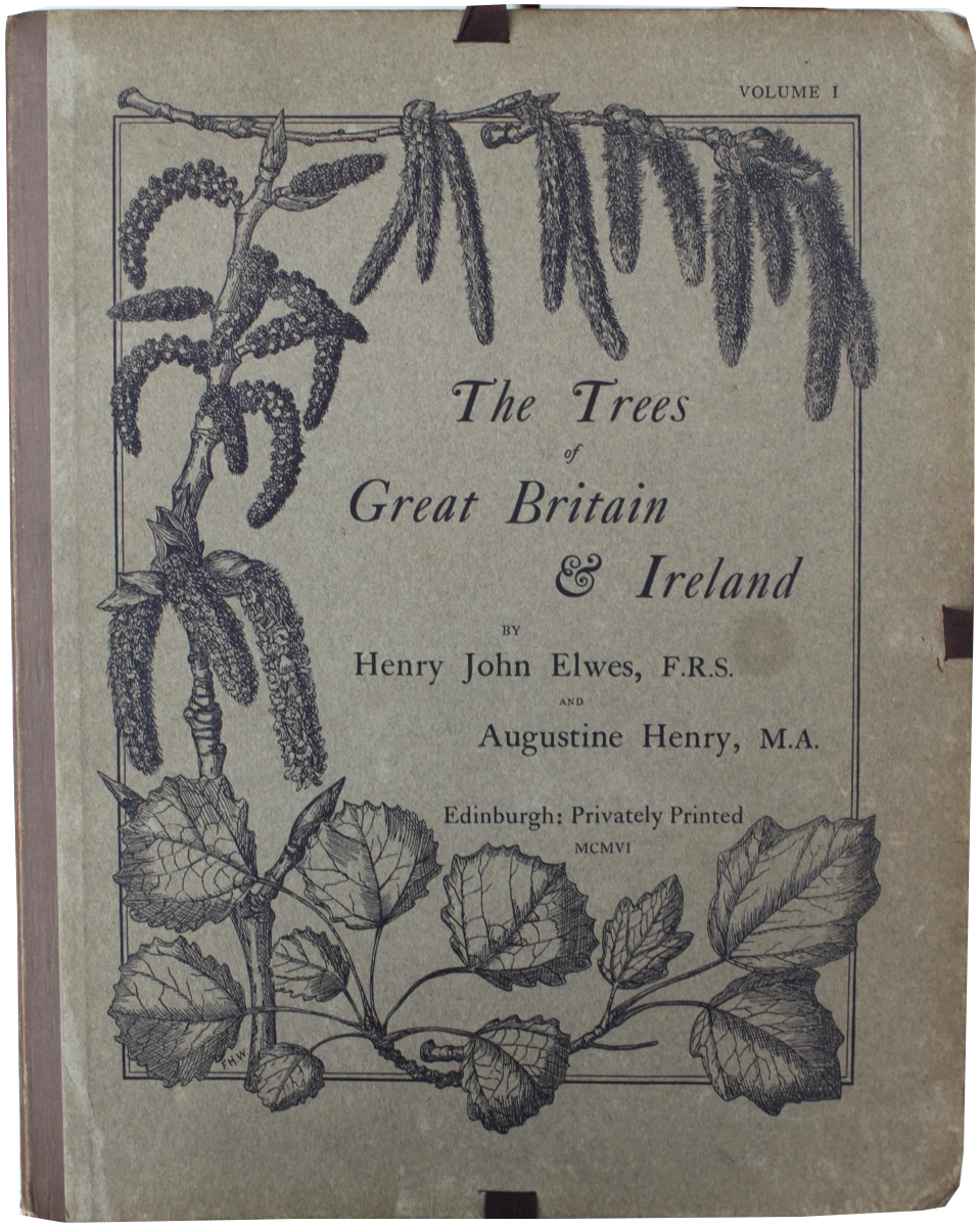 Image for The Trees of Great Britain and Ireland. Complete.
